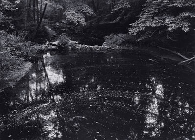 Paul Caponigro, 'Redding Woods Pond', 1971
