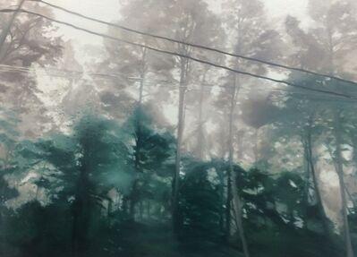 Goyona JUNG, 'Forest', 2017