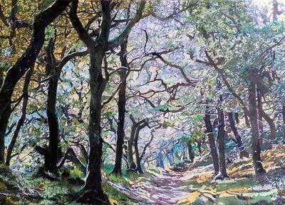 Philippa Beale, 'Badgeworthy Wood, Doone valley, Exmoor', 2020