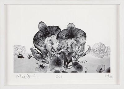 Marc Quinn, 'Under The Ocean', 2011