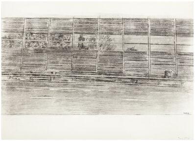 Olga Chernysheva, 'Nothing 1', 2016