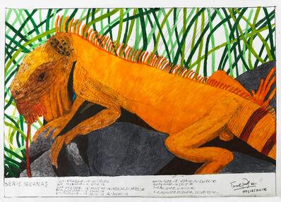 Teresa Burga, 'Serie Iguanas', 2018