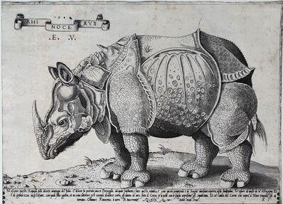 Enea Vico, 'Rhinocerus', 1542