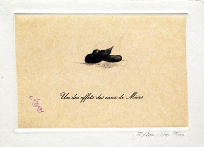 Richard Hamilton, 'Un des Effets des Eaux de Miers (from eighteen small prints)', 1973