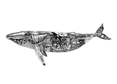 Christo Du Toit, 'Whale - Limited Edition Print'