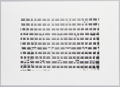 Lilah Fowler, 'grille #1', 2012