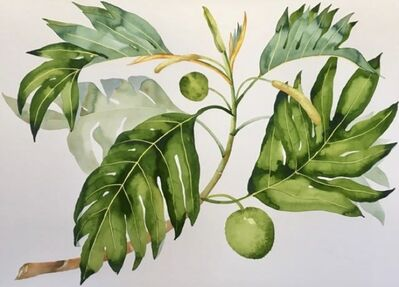 Idoline Duke, 'Breadfruit Branch', 2019