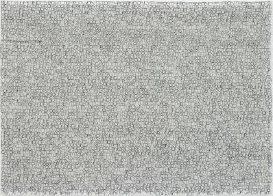 Jessica Rankin, 'Passage Dusty (Hummings)', 2007