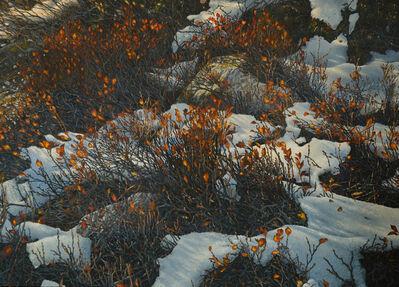 Reinhard Fluri, 'Erster Schnee', 2021