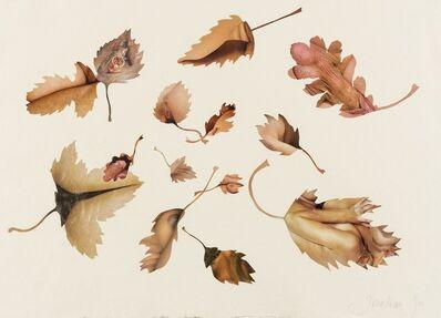 Jonathan Yeo, 'Leaf Study', 2009