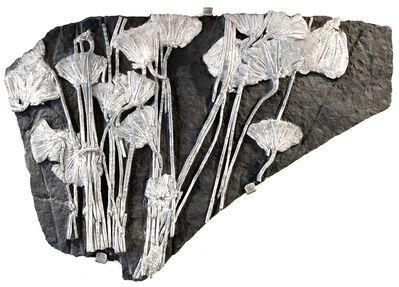 Natural History, 'Japanese Crinoid', Circa 180 Million Years Old