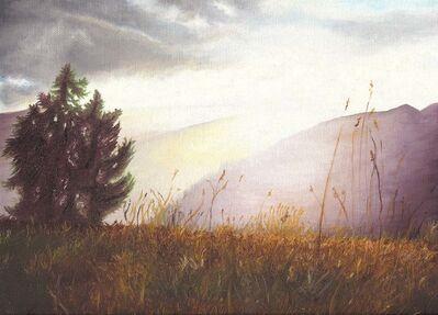 Nele Ouwens, 'Aviemore', 2006