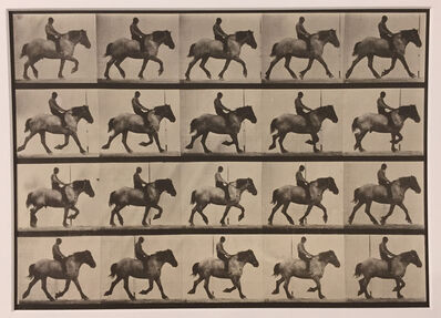 Eadweard Muybridge, 'Animal Locomotion, Plate 597', 1887