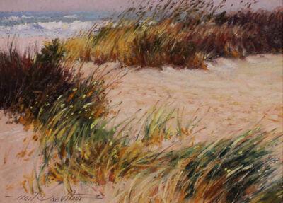 Neil Drevitson, 'Coast Guard Beach', 2020