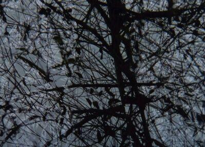 Paul Clipson, 'Made of Air( Film  still 5)  ', 2014
