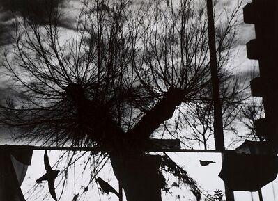 Mario Giacomelli, 'Untitled', 1997