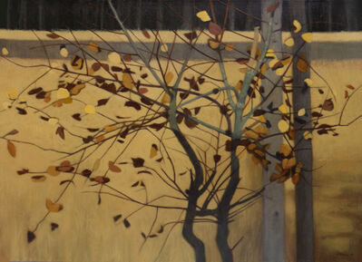 Connie Borup, 'Leaf Lights', 2002