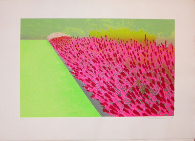 Ivor Abrahams, 'Privacy Plot : Flower Garden', 1970