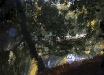 Jorma Puranen, 'Fish Pond, Shimmer', 2015
