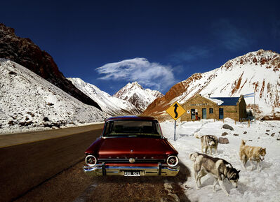 Marcelo Tinoco, 'Aconcagua Dogs (from the series Fotorama)', 2011