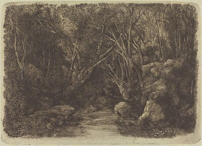 Rodolphe Bresdin, 'The Brook in the Woods', 1880