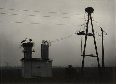Pentti Sammallahti, 'Vorumaa, Estonia', 2004