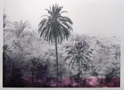 Daniele Genadry, 'Between Saida and Sur (Black palms)', 2009