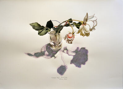Óscar Tusquets Blanca, 'Rosas bajo dicroica', 2012