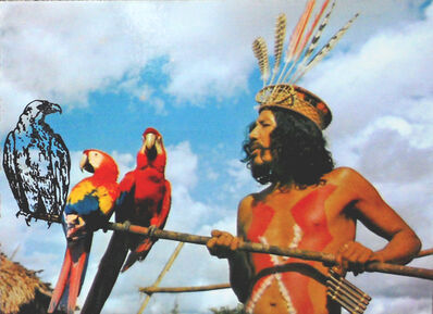 Regina Silveira, 'Brazil Today: Indians From Brazil', 1977