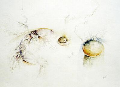 Jose Luis Fariñas, 'Impure Metaphysical Objects', 2011