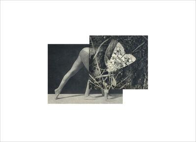 Cecilia Bonilla, 'Between Animals and Trees 15', 2020
