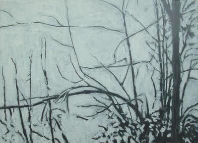 Heribert C. Ottersbach, 'Moberly Lake, 2006'', 2006