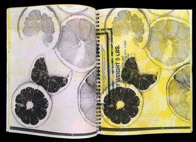 Josh Smith, 'Orange Book', 2015