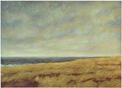 Wulf Winckelmann, 'Tristan da Cunha (#1058) ', 2013