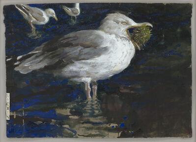 Jamie Wyeth, 'Urchin', 1999