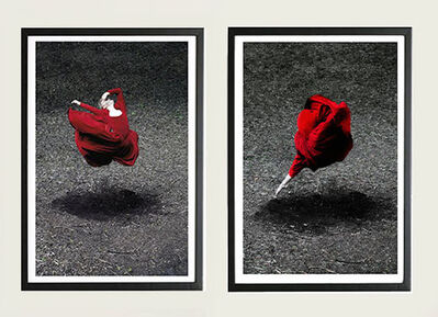 Guilherme Licurgo, 'Desert Rose I and Desert Rose Diptych (Color Photography) Framed', 2014