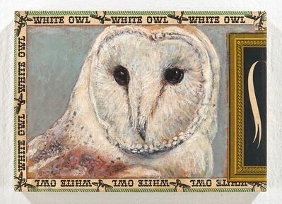 Ed Musante, 'Barn Owl / White Owl', 2019