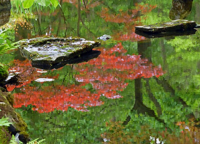 Larry Garmezy, 'Touch of Zen #2 - Calm, serene, colorful, waterscape photograph, Zen, Japanese Garden, The Hague, tranquil water, of coral red and green', 2017