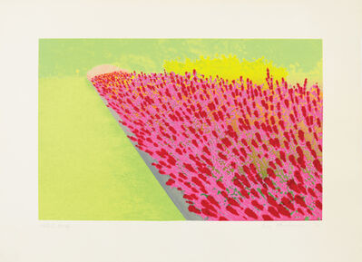 Ivor Abrahams, 'Pricacy Plot: Flower Garden', 1970