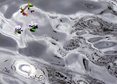 """Larry Garmezy, '""""Tension #3"""" - Abstract waterscape photography with flowers and reflections of trees in water.', 2008"""