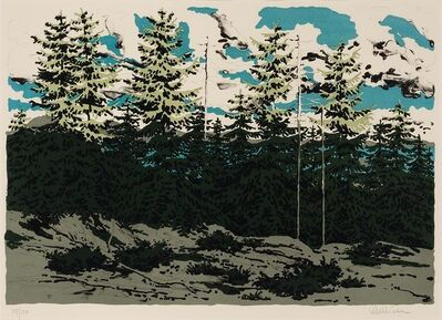 Neil G. Welliver, 'Maine Landscape (From Zeke'S); Cedar Water Pool'