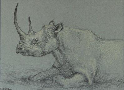 Sarah Becktel, 'Study of a Rhino', 2020