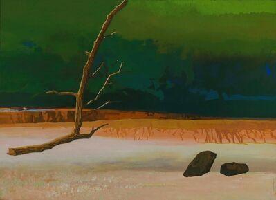 Wan-Chun Wang, 'A Dumb Stone Questioning a Shriveled Tree', 2013