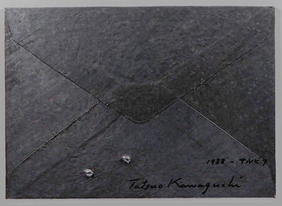 Tatsuo Kawaguchi, 'Relation - Lead Envelope / Salvia', 1988
