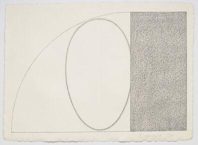 Robert Mangold (b.1937), 'Curved Plane/Figure', 1994