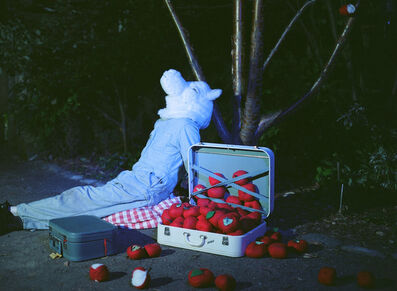 Amalie Atkins, 'Wolf Sitting with Apples', 2009