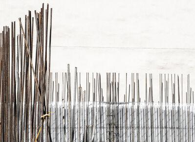 Bill Jackson, 'Rebar Reeds', 2014