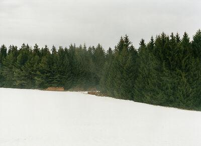 Bernhard Fuchs, 'Thurnerschlag, Winter', 2012