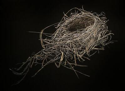 Mitchell Lonas, 'Spring Cardinal Nest', 2019