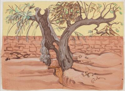 Sigrid Holmwood, 'Village Trees Straddling a Water Channel', 2012